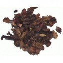 Darjeeling China Seed TGFOP
