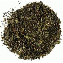 Jamaica - Yoga Tee, bio