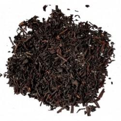 Himalaya Yoga Tee органик