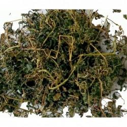 Mu Tea - Yoga Tea, organic