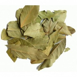 Aura infuso ecológico, 15 bolsitas, 30 g