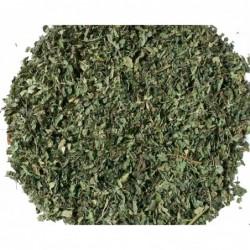 Tilia cordata, ecológica