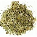 100 paper tea filters, teeli flip® M